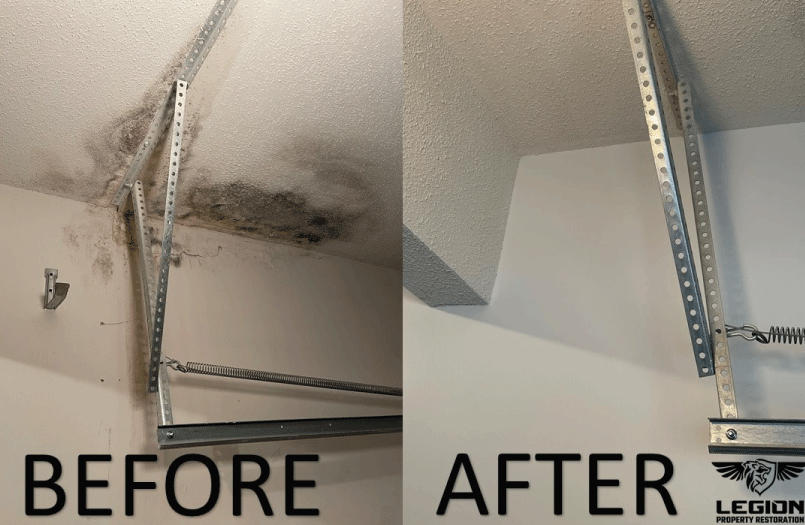 Georgia Mold Restoration
